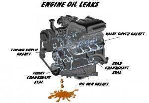Low Fluid Levels or Leaks