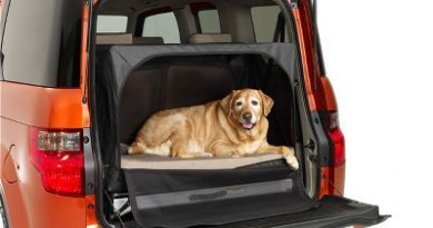 6 Dog-Friendly Cars to Choose From