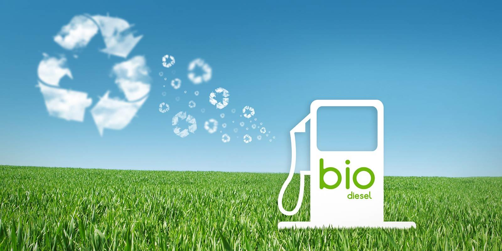 The Pros and Cons of Biodiesel Energy - CAR FROM JAPAN