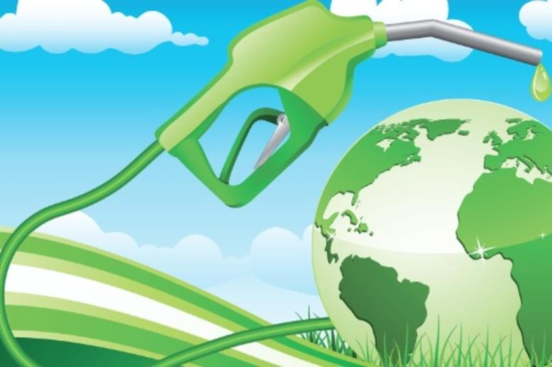 the harmful effects of biofuels • what policies can mitigate the potential negative indirect effects of biofuels on land-use change  review of indirect effects of biofuels .