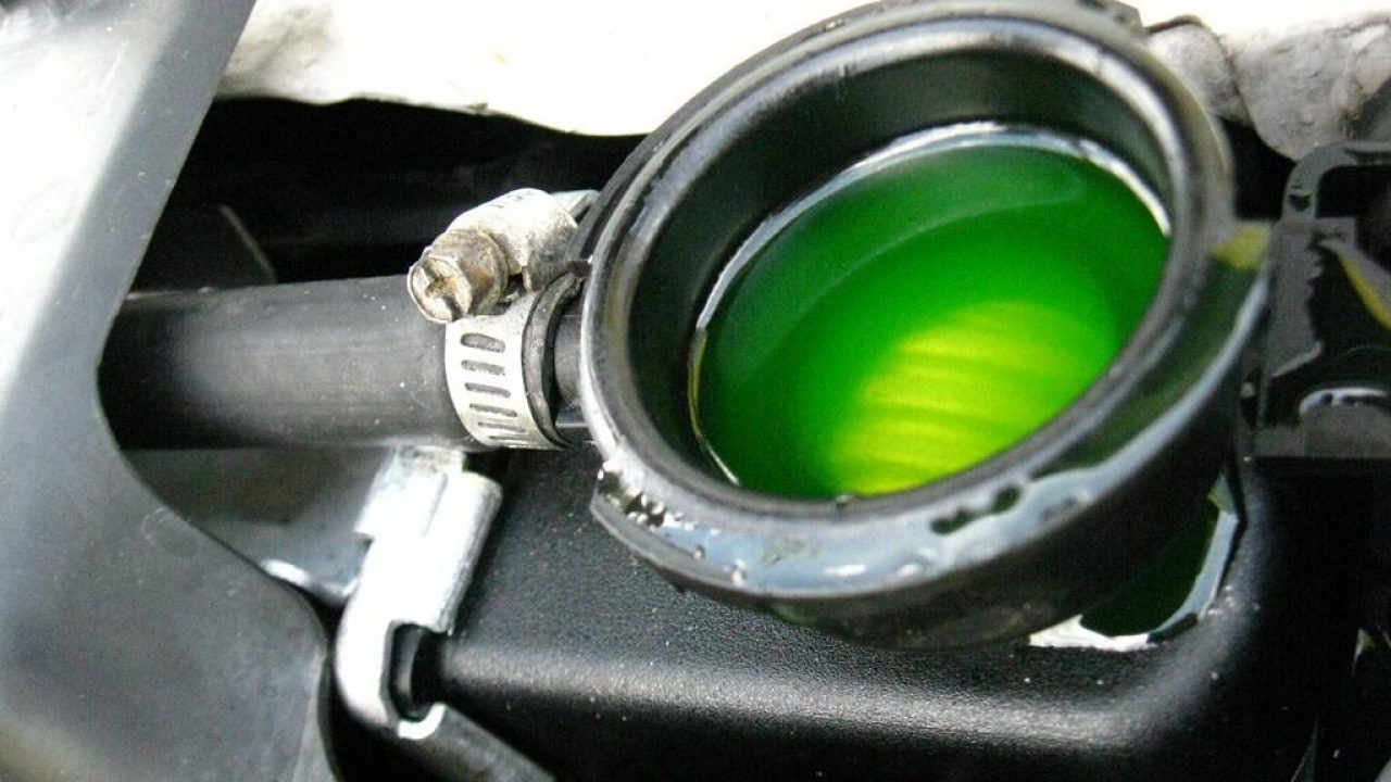 5 Warning Signs of Low Coolant in Car   CAR FROM JAPAN