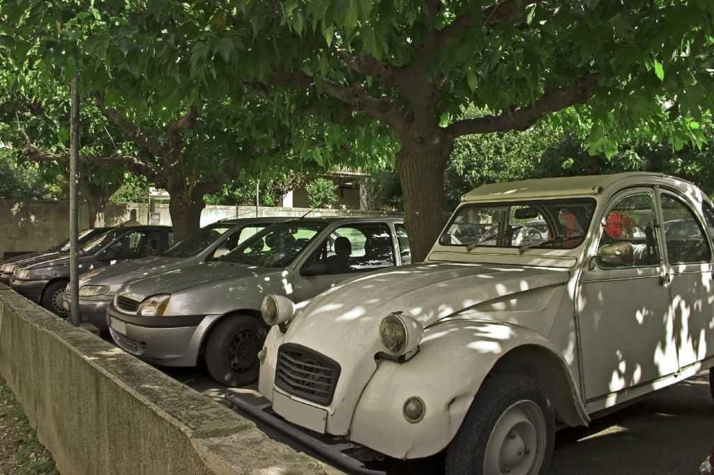 park the car in shady spot