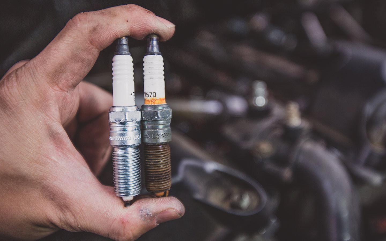oily spark plugs