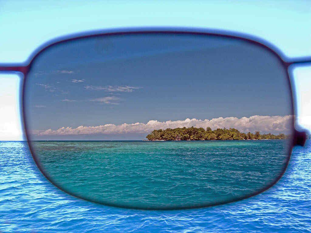 polarized sunglasses test
